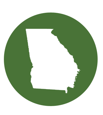 Eligibility for Georgian's with disabilities